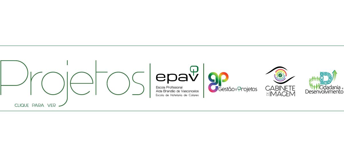 epav_proj_site_3logos3